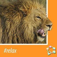 #Relax www.venue10.com