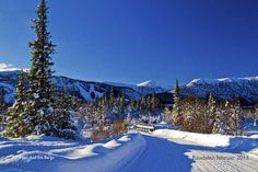 A winter holiday in Norway is not just about great skiing. Holidays In Norway, Winter Holidays, Jotunheimen National Park, Mountain Village, Otter, Winter Snow, Highlands, Skiing, Backdrops
