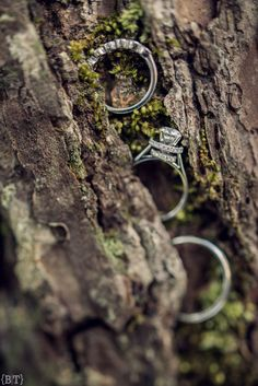 Wedding Rings | Benjie Tiongco Photography | Baguio Wedding | www.benjietiongco.com