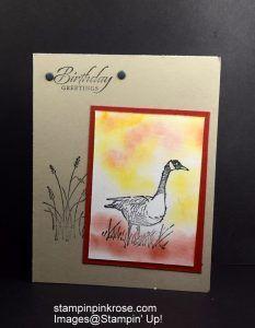 Stampin' Up! Birthday card made with Wetlands stamp set and designed by Demo Pamela Sadler. See more cards at stampinkrose.com #stampinkpinkrose #etsycardstrulyheart