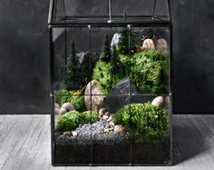 A larger version of our mini refrigerator magnet. The clear vessel is filled with fresh mosses and stones to simulate a miniature landscape. Sticks securely to virtually any metal surface. Features: • Measures 2 tall x 2 wide x 0.5 thick • Includes plants shown; no assembly required • Easy care; no sun/fertilizer required • Comes with detailed plant care instructions  ♥ SHIPPING INFORMATION ♥  All items are handmade and packaged by me and orders are generally processed and shipped in the...