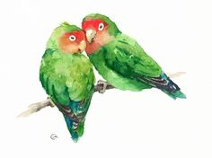Watercolor Lovebirds - Original Bird Painting 8.5 x 11.5 inches