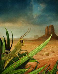 Grasshopper by Mehrdokht Amini