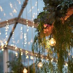 Twinkles at Dusk - we had so much fun styling this clear top marquee and gorgeous fairy lights through hanging foliage and light bulbs. It created such a beautiful atmosphere for the couple and guests to enjoy.