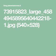 73915823_large_4584945895640442218-1.jpg (540×528)