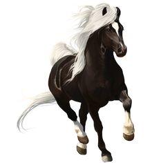 Vanilla, Pferd Paint Horse Rappe mit Overo-Scheckung #275086 - Howrse