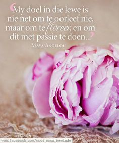 Leef Wisdom Quotes, Words Quotes, Life Quotes, Afrikaanse Quotes, Motivational Quotes, Inspirational Quotes, Happy Minds, Night Quotes, Godly Woman