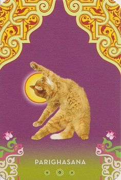 Cat Yoga:RESERVED by Jennifer @ Not Your Momma's Cookie, via Flickr