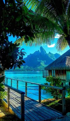 Bora Bora #honeymoon #borabora