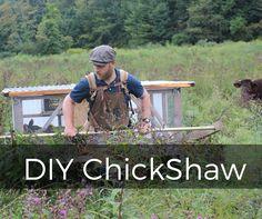 DIY ChickShaw