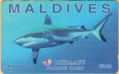 Maldives - GPT, Grey Shark, 10MLDC, 2/00, Used Maldives, Shark, Grey, The Maldives, Ash, Gray, Sharks, Repose Gray