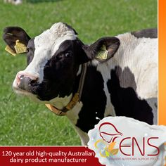 Fresh local ingredients and are blended with the knowledge and expertise of a 120 year old high-quality Australian dairy product manufacturer.  For more information visit our website at http://www.ens.global/ or contact our customer service for more information through email at info@ens.global.