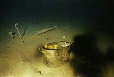 Metal cooking pots from the R. Titanic seen in the debris field with a White Star mug in the background. Rms Titanic, Titanic Deaths, Titanic Wreck, Titanic Ship, Titanic History, Titanic Sinking, Belfast, Original Titanic, Titanic Underwater