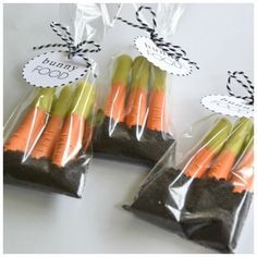 Cute pretzle carrots in Oreo dirt