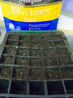 How to Start Seeds Indoors With Limited Space