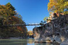 """【厳美渓の紅葉情報です。】平泉観光とともに一関市の人気観光スポットの渓流、厳美渓。川岸を彩る四季の景色は年間を通して美しく、国の名勝天然記念物に指定されている。10月中旬からモミジが鮮やかに色づき、渓流の滝とのコントラストを楽しめる。ウォーカープラスの""""紅葉名所2016""""では、全国約700ヶ所の紅葉情報を掲載!"""