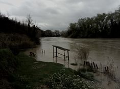 Too much rain brings the mood down and the level of the river Tiber up. Our meditation place the bench, provided wet feet https://plus.google.com/+AdelheidHornlein/posts/PBw2FzTWrfw