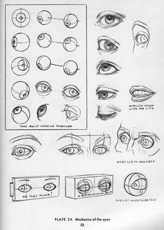 Wil je beter leren kijken ga dan tekenen.