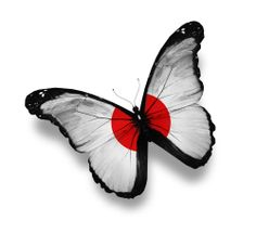 Japanese Flag Butterfly,