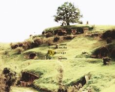 """""""it never ceases to amaze me, the courage of hobbits."""""""