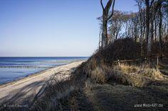Erstes Frühlingserwachen in Nienhagen // #Ostssee #Nienhagen #Gespensterwald #Strand #Wald #Küste #MecklenburgVorpommern / gepinnt von www.MeerART.de