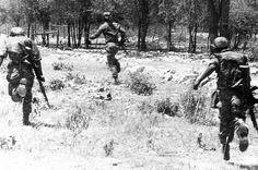 -Koevoet ! West Africa, South Africa, Army Day, Defence Force, Korean War, Modern Warfare, Special Forces, Vietnam War, Cold War