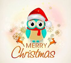 Merry Christmas Wallpaper Cute Owl