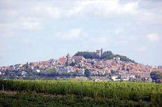 """En plein Berry, Sancerre, ancienne place forte anglaise pendant la guerre de Cent ans, domine la Loire du haut de son piton rocheux. Au pied de Sancerre : Chavignol, pays des célèbres """"crottins""""... Bué ou vous vous ferez indiquer le surprenant site de"""" la Poussie"""", Crezancy… Verdigny ... Sury en vaux"""
