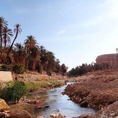 L'Oasis dans toute sa splendeur. Welcome To the Oasis. الواحة و الراحة #oasis #palmiers #palms #water #cristalclear #eaudesource #verdure #ghoufi #ghassira #aures #batna #rocks #peaceofmind #bluesky #ciel #bleu #chawiya #africa #hiking #randonnée #alger#dzphotographie #tourismealgeria #nomadsdz #sonybridgecamera #landscape #discoveringmycountry👀👣