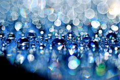 Water droplet bokeh.