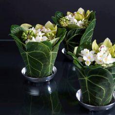 Leaf planters