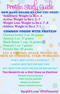 Nutrition 101: Protein Study Guide