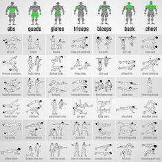 https://www.musclesaurus.com/flat-stomach-exercises/