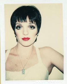 """3,032 Likes, 24 Comments - @70sbabes on Instagram: """"Liza Minnelli (1977) by Warhol"""""""