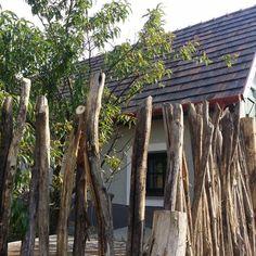 kérgezett akác oszlopokból Rustic Fence, Fa, Tree Trunks, Fencing, Pergola, Plants, Instagram, Wood Fences, Fences