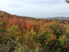 Blue Mountains, Collingwood Ontario Blue Mountain, Ontario, Places Ive Been, Spaces, Mountains, Nature, Travel, Naturaleza, Viajes