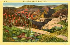 Vintage Arizona postcard of the Painted Cliffs & Apache Trail Scenic Highway between Phoenix & Globe. Beautiful card for framing.