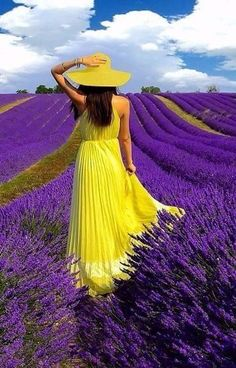 The contrast in this photo is done by the use of complementary colors. The bright yellow dress and hat against the purple lavender creates a contrast and makes the lady stand out against everything else. Mellow Yellow, Purple Yellow, Yellow Dress, Purple Accents, Black N Yellow, Lavender Fields, Lavender Flowers, Love Rose, All Things Purple