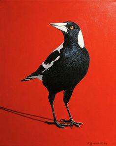Magpie - Peter Gerasimon Australian Animals, Australian Artists, Pretty Birds, Beautiful Birds, Street Art, Crows Ravens, Rabe, All Nature, Wildlife Art