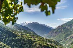 Wein vom höchsten Weinberg in Europa - Visperterminen Switzerland, Scenery, Hiking, Mountains, Nature, Travel, Beautiful, Wallis, Fitness Workouts