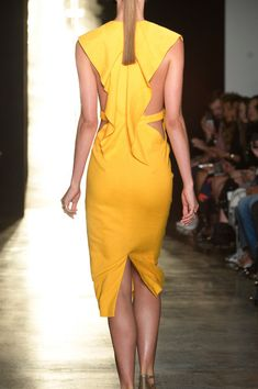 Cushnie et Ochs at New York Spring 2015 (Details)