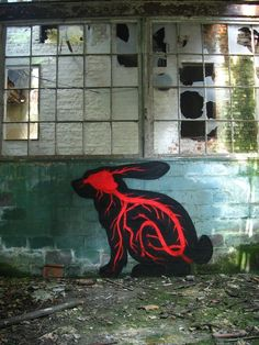 #ROA #Graffiti #StreetArt #art