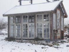 drømmer jeg om sol og sommer og .... et veksthus av gamle vinduer! Er ikke dette herlig? Akkurat et slikt veksthus har jeg...