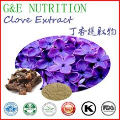 Hot sale Best Quality 100% Natural clove Extract with free shipping 700g