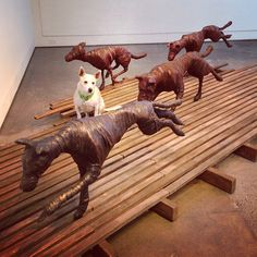I spy with my little eye...Gemma! Pictured among the sculptures of Amanda Stuart's new exhibition