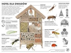 Ekologiczny dom dla owadów. Owady, dam, ekologia. Home Crafts, Diy And Crafts, Crafts For Kids, Permaculture, Botanical Gardens, Gazebo, Garden Design, Childhood, Outdoor Structures