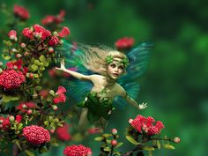 Magic Fairies are fantasy creatures in folklore and mythology. Enjoy splendid wallpaper with a magic fairy with every new tab.