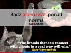 Bądź jeden level ponad normą - o obsłudze klienta w by Gary Vaynerchuk, Connection, Twitter, Youtube, Psychics, Youtube Movies