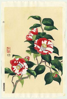 Nisaburo Ito (1910 – 1988): Red & White Camellias (Tsubaki)