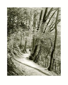Wolfgang Moersch Fine-Art-Printing & Photo-Chemie   Galerie